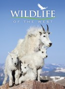 Wildlife of the West