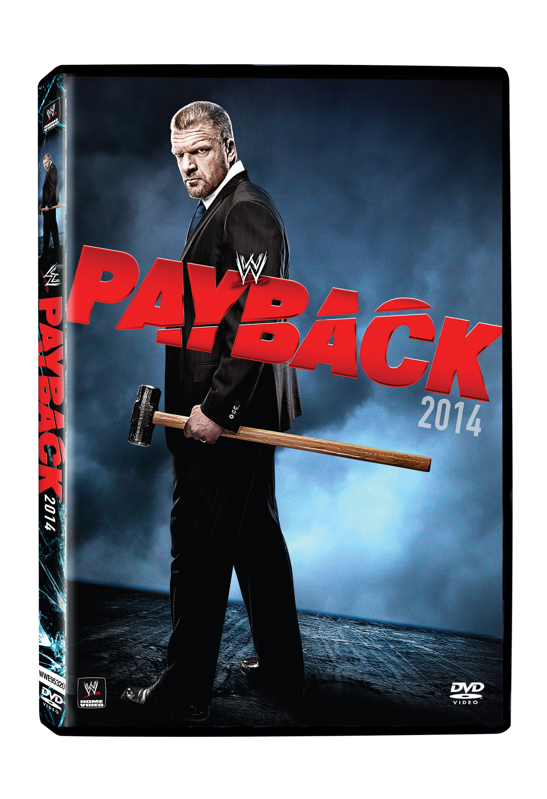 Payback 2014 - WWE - Cinedigm Entertainment