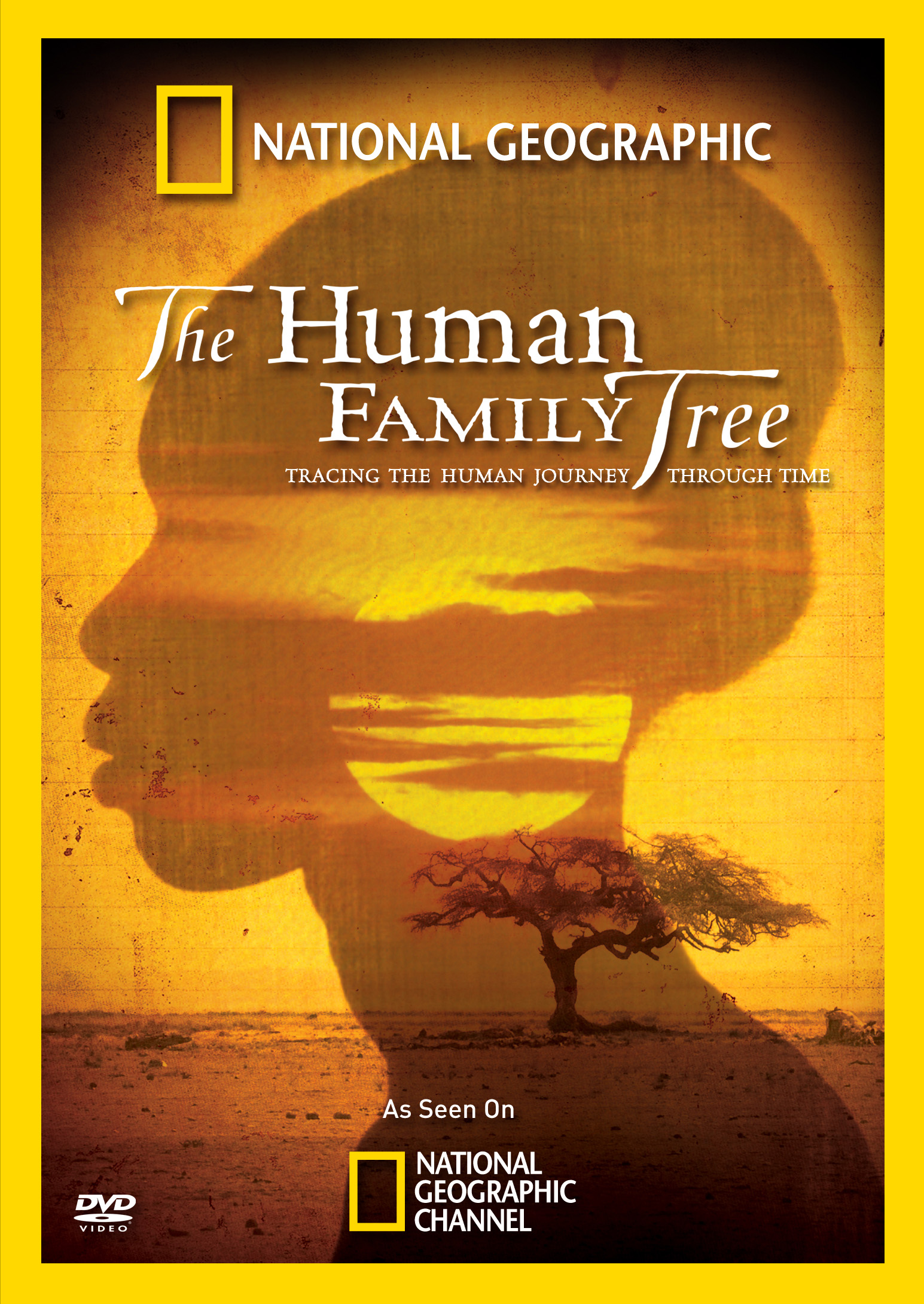The Human Family Tree National Geographic Cinedigm