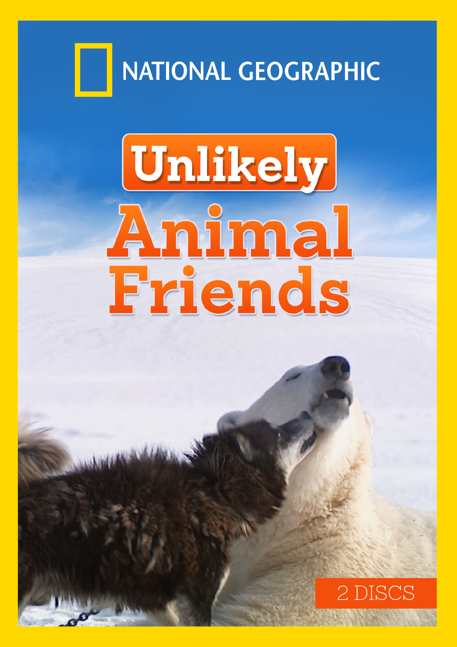 Unlikely Animal Friends National Geographic Cinedigm